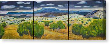 Cerrillos Spring Canvas Print