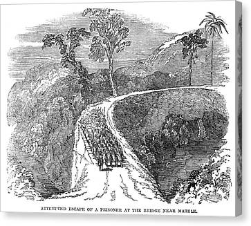 Ceylon Prisoners Canvas Print by Granger