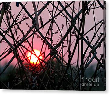 Canvas Print featuring the photograph Chain Link Sunset by Jennie Breeze