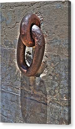 Chain Canvas Print by Timothy Lowry