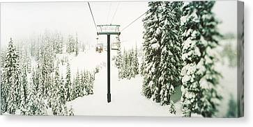 Evergreen Trees Canvas Print - Chair Lift And Snowy Evergreen Trees by Panoramic Images