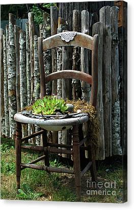 Canvas Print featuring the photograph Chair Planter by Ron Roberts