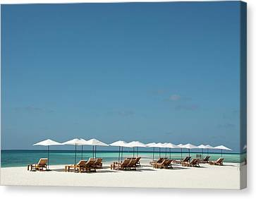 Empty Chairs Canvas Print - Chairs And Umbrellas On The Beach by Scubazoo