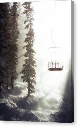 White Pines Canvas Print - Chairway To Heaven by Kevin Munro