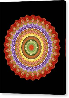 Chakra Spin Canvas Print by Barbie Wagner