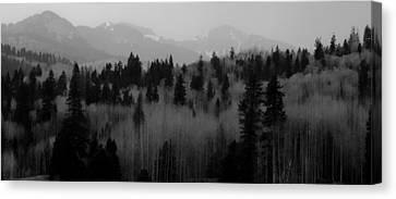 Chama Trees Canvas Print by Atom Crawford
