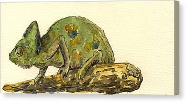Chameleon Canvas Print by Juan  Bosco