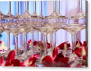 Champagne Glass Canvas Print