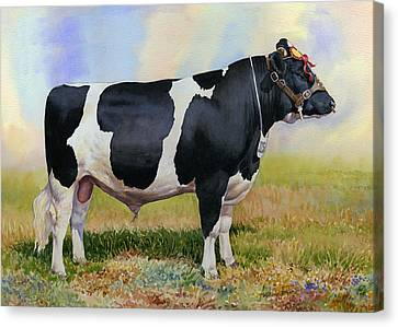 Champion Friesian Bull Canvas Print by Anthony Forster
