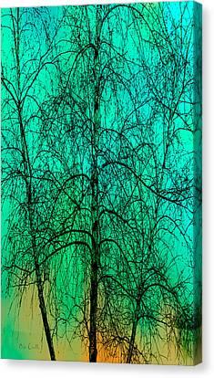 Change Of Seasons Canvas Print by Bob Orsillo
