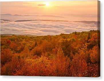 Canvas Print featuring the photograph Changing Of Seasons by Bernard Chen