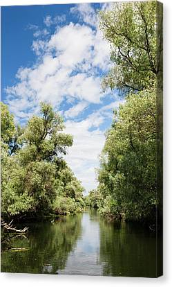 Flooding Canvas Print - Channels And Lakes In The Danube Delta by Martin Zwick