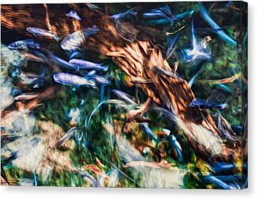 Canvas Print featuring the photograph Chaotic Mess by Joshua Minso