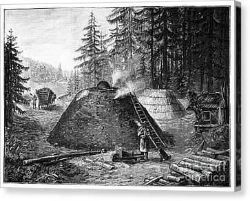 Burned Clay Canvas Print - Charcoal Production, 19th Century by Spl