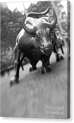 Charging Bull 2 Canvas Print by Tony Cordoza
