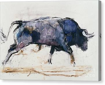 Bison Canvas Print - Charging Bull by Mark Adlington
