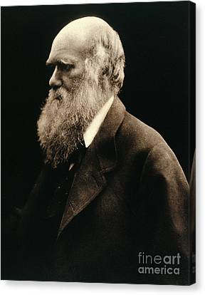 Charles Darwin By Julia Margaret Canvas Print by Wellcome Images