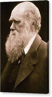 Charles Darwin Canvas Print by Julia Margaret Cameron