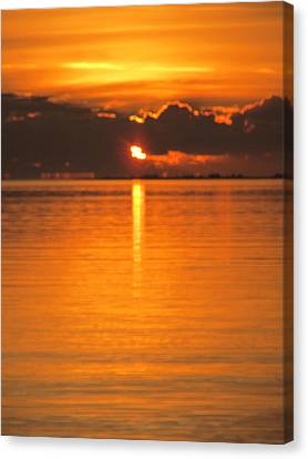 Canvas Print featuring the photograph Charleston Morning Sunrise  by Joetta Beauford