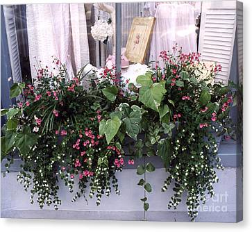 Charleston Romantic Floral Window Box Flowers Vintage Cottage Chic Flower Box  Canvas Print by Kathy Fornal