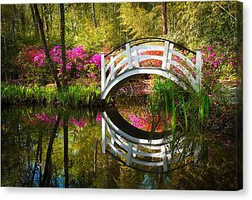 Charleston Sc Magnolia Plantation Spring Blooming Azalea Flowers Garden Canvas Print by Dave Allen