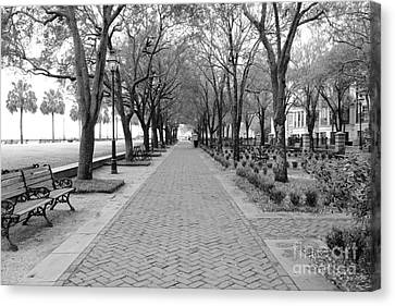 Charleston Waterfront Park Walkway - Black And White Canvas Print