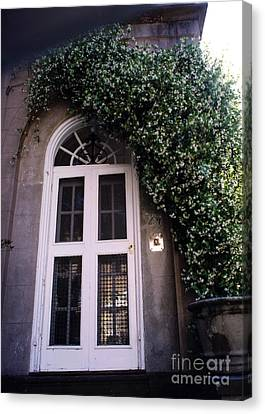 Charleston French Quarter White Door With Green Ivy Arch Canvas Print by Kathy Fornal