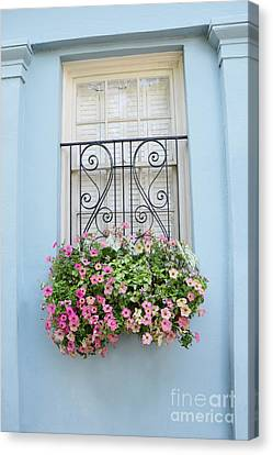 Charleston Window Box Flower Photography - Charleston Rainbow Row Blue Aqua Dreamy Flower Window Box Canvas Print by Kathy Fornal