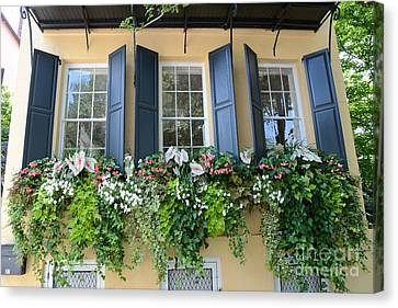 Charleston Window Box Flower Photography - Charleston Yellow Blue Green Floral Window Boxes Canvas Print by Kathy Fornal