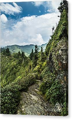 Canvas Print featuring the photograph Charlies Bunion Trail by Debbie Green