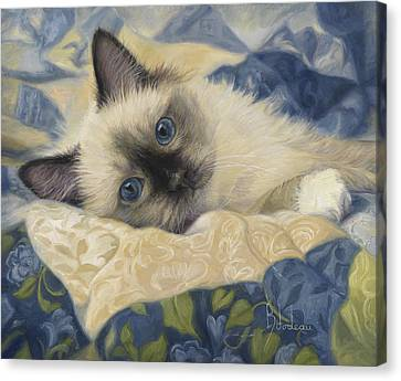 Kitten Canvas Print - Charming by Lucie Bilodeau
