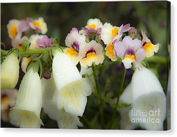 Charming Snapdragon And Foxglove Flowers In The Garden Canvas Print by Jerry Cowart
