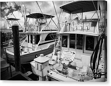 Charter Fishing Boats In The Old Seaport Of Key West Florida Usa Canvas Print by Joe Fox