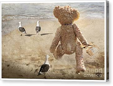 Chasing After Seagulls Canvas Print by Adelita Rog