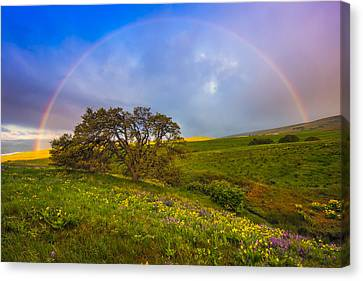 Chasing Rainbows Canvas Print