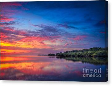 Chasing The Light Canvas Print by Marvin Spates