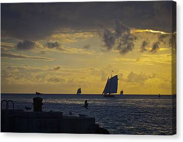 Chasing The Wind Vii Canvas Print by Scott Meyer
