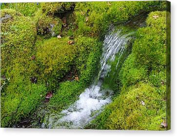 Canvas Print featuring the photograph Chasing Waterfalls by Marilyn Wilson