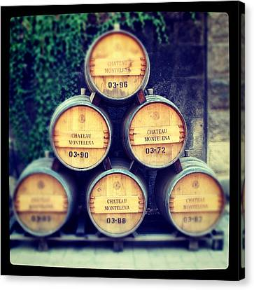 Chateau Barrels Canvas Print by Jean Macaluso