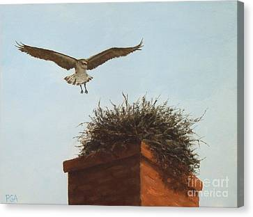 Checking The Nest Canvas Print