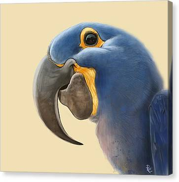 Cheeky Parrot Canvas Print