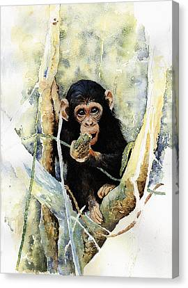 Cheeky Canvas Print by Roger Bonnick