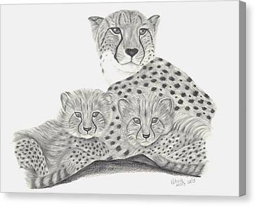 Cheetah And Her Cubs Canvas Print by Patricia Hiltz