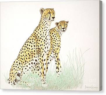 Cheetah Couple Canvas Print by Dag Sla