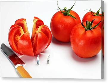 Chefs Chopping Tomatoes Little People Big Worlds Canvas Print by Paul Ge