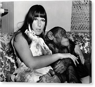 Cher  In Good Times  Canvas Print by Silver Screen
