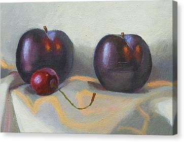 Cherry And Plums Canvas Print by Peter Orrock