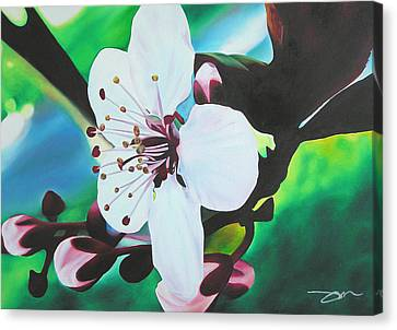 Canvas Print featuring the painting Cherry Blosom by Joshua Morton