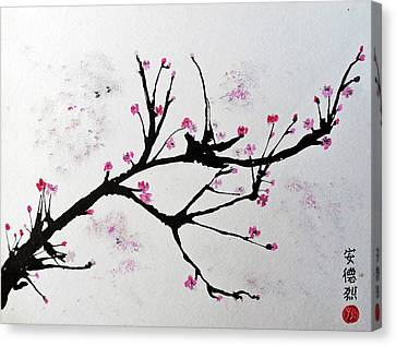 Cherry Blossom  Canvas Print by Andrea Realpe