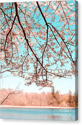 Cherry Blossom On The Lake Canvas Print